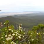 Ausblick vom Mount Magog