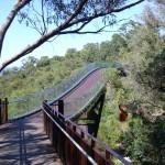 Kings Park Brücke