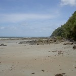 Alexandra Beach Cape Tribulation