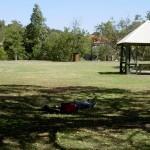 Noosa Park