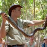 Townsville Billabong Sanctuary - Tierwärter mit Schlange