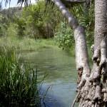Fraser Island 4WD Tour Eli Creek - Creek von Boardwalk aufwärts