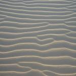 Wellen Nahaufnahme
