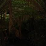 Melba-Gully-State-Park