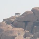 hampi tempel